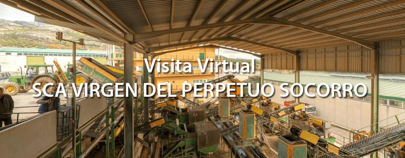 visita-virtual-carrasqueño