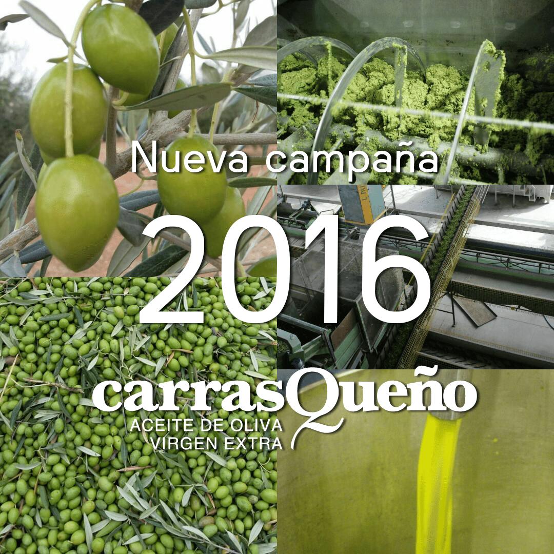 Nueva Campaña 2016