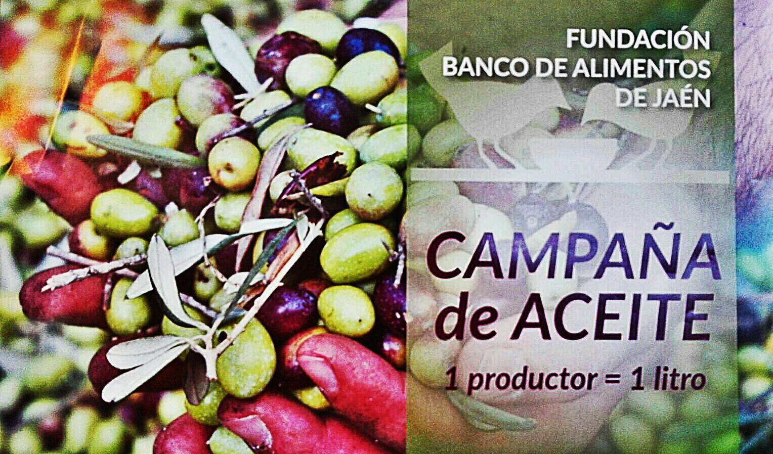 Colaboramos con el Banco de Alimentos de Jaén. Ven a nuestra tienda, tu también puedes colaborar.