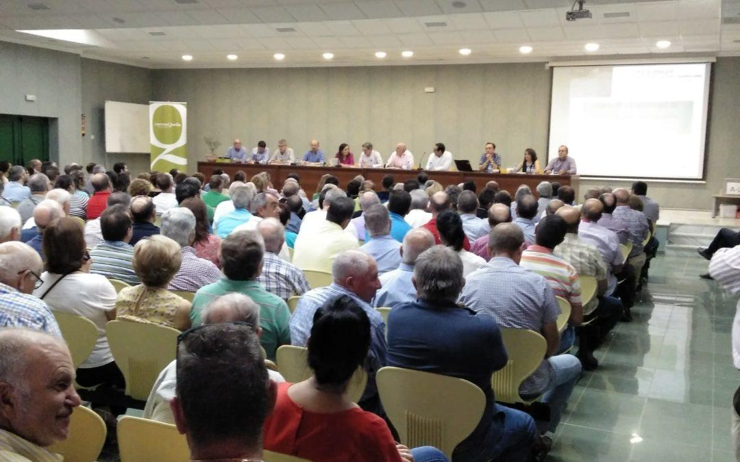 Charla informativa después de los daños producidos en el olivar de nuestro municipio el pasado 9 de septiembre.
